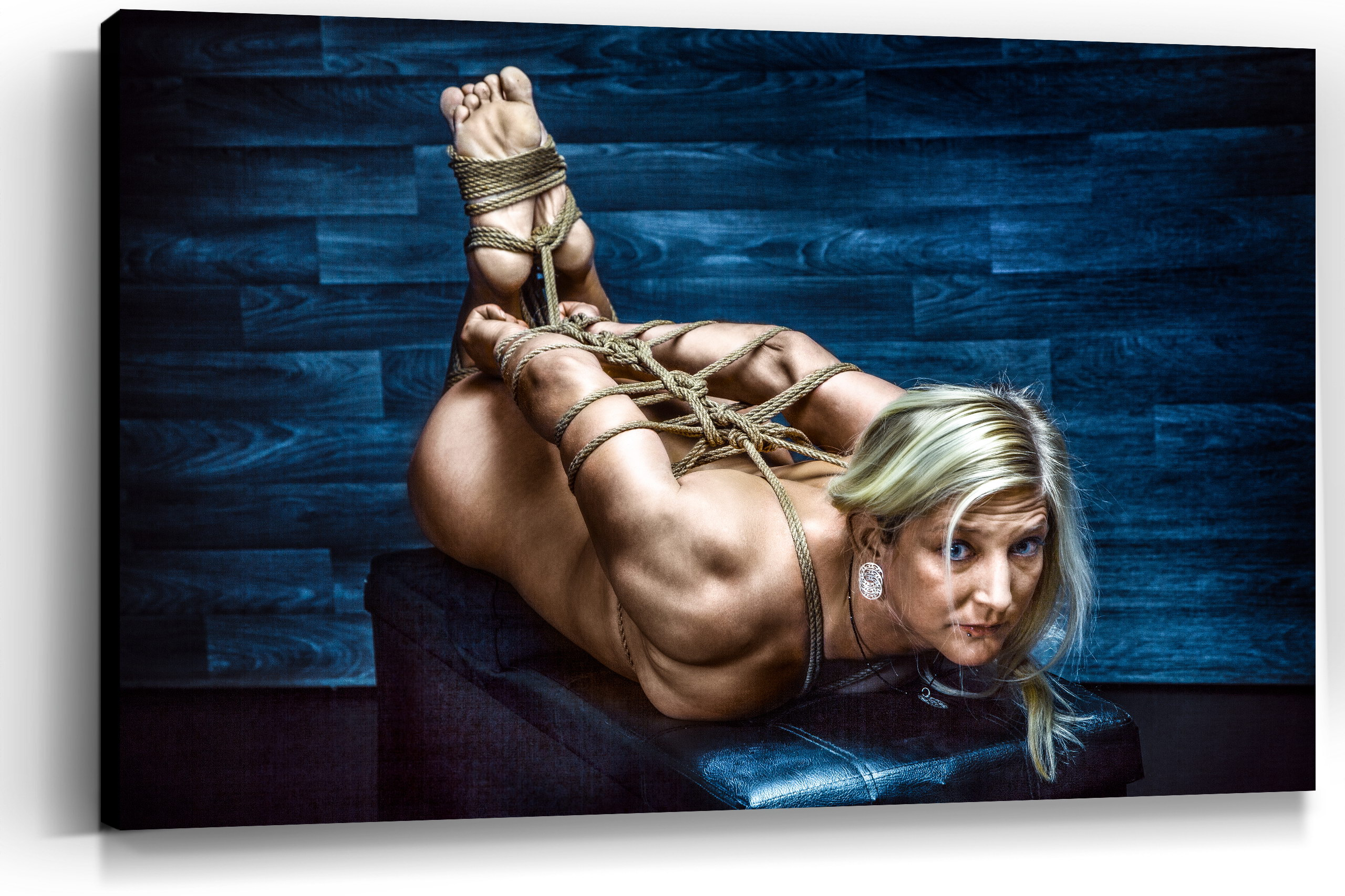 Nude tied up art 4