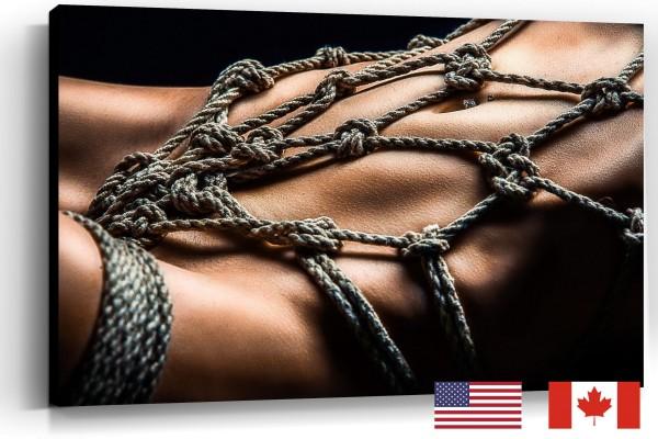 Rope Harness Closeup, USA